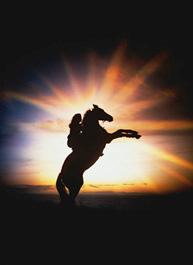 woman_horse_rearing-2